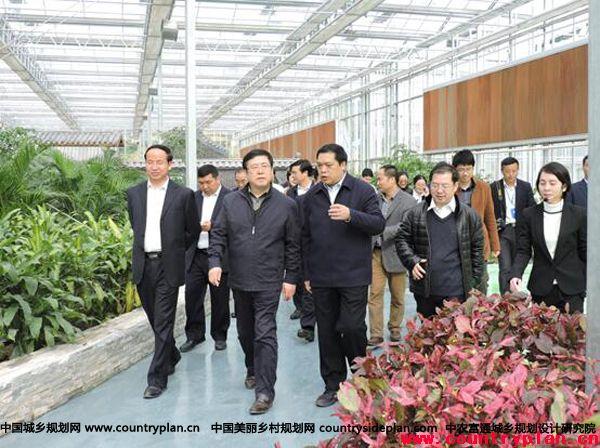 """第二届广西玉林""""五彩田园""""农业嘉年华于2016年1月1日正式开园迎客"""