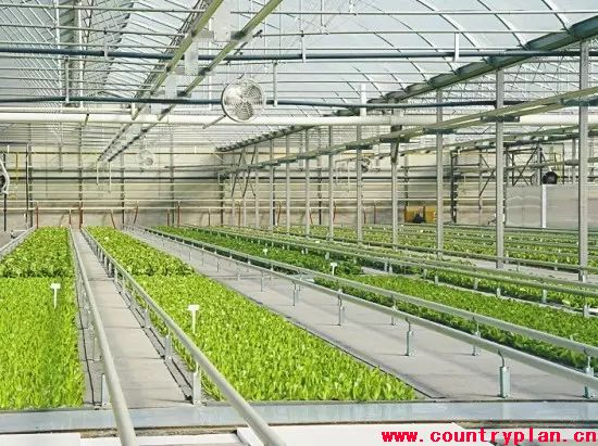 国务院通过《全国农业现代化规划》