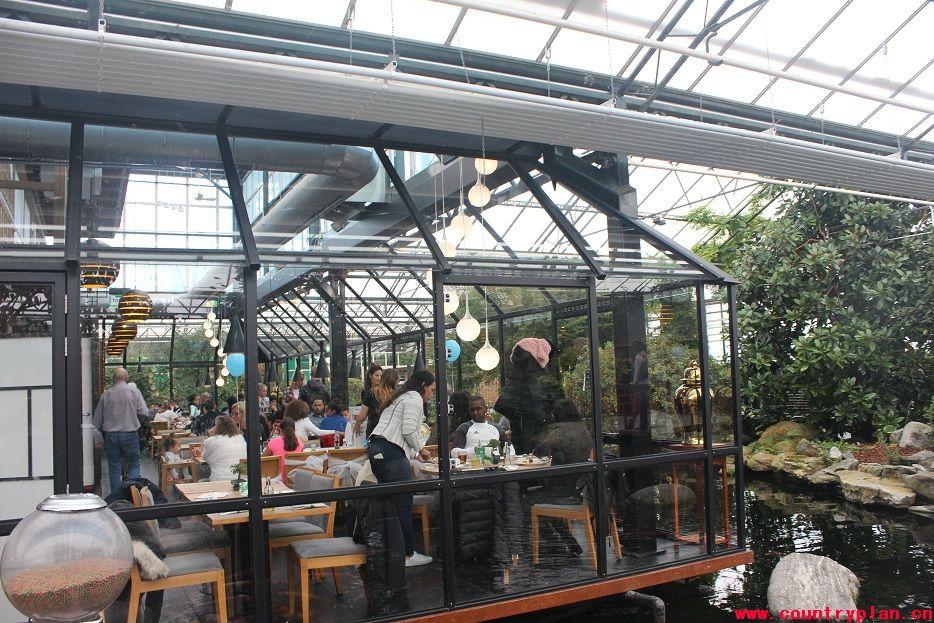 而位于荷兰的这家中国式生态餐厅,也毫不逊色,甚至更具生态意味.图片